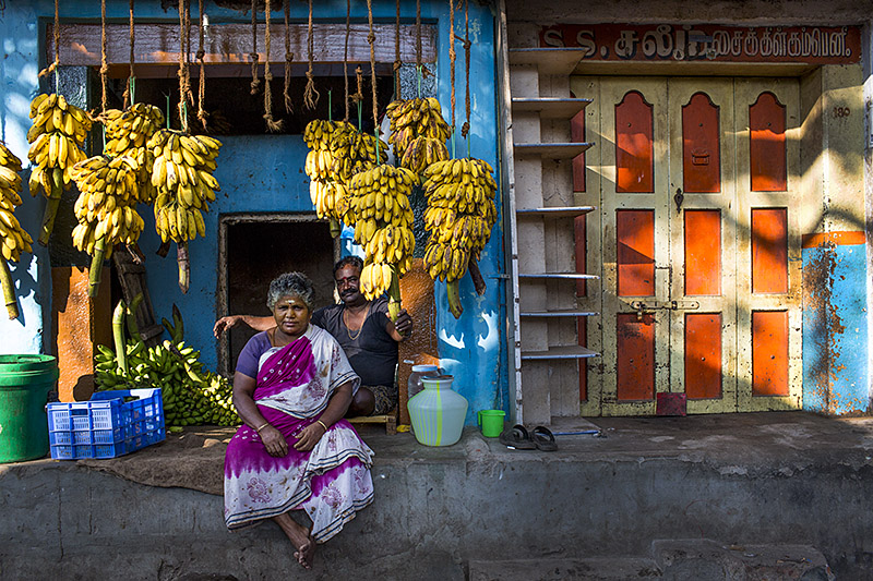 Banana dealers_Madurai_India_Hagerman_11_19_13