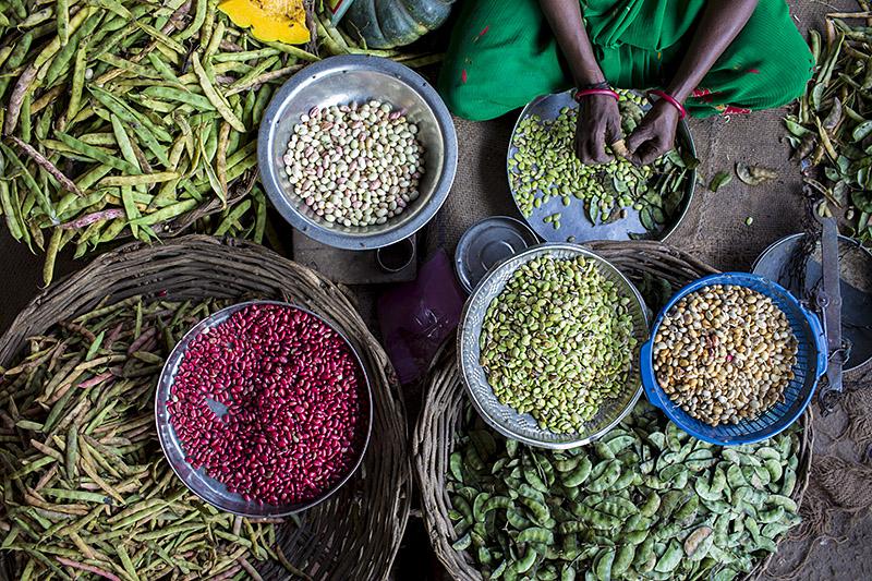 Beans_Madurai_India